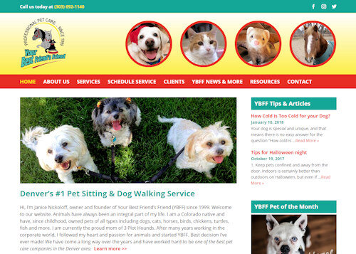 Denver Website Design Developer